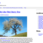 Toolbox WordPress starter theme
